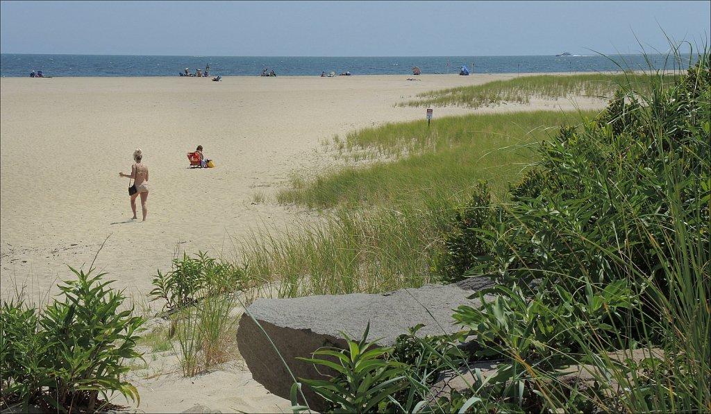Dunes Meet Beach