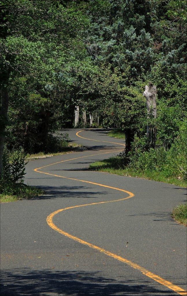 Empty Bike Path