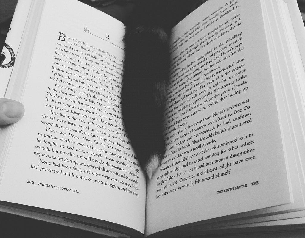 Cat Tales 2.0