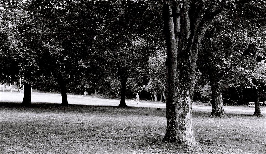 Schooley's Mountain Park