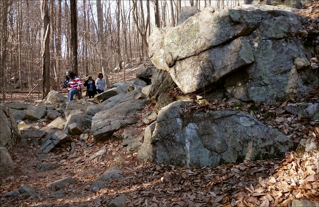 Schooley's Mountain Park